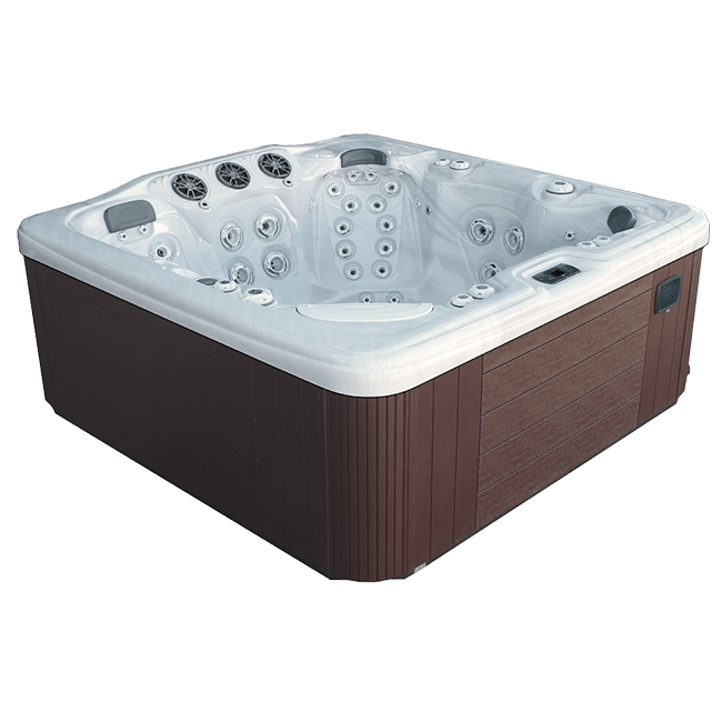 Dynasty Spas Allure Series B759 in Arden, NC