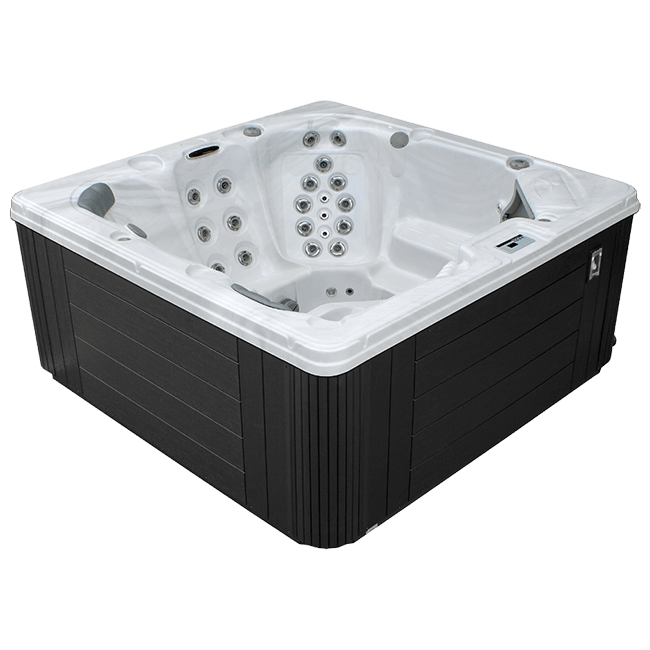 Dynasty Spas Passport Series L742 in Arden, NC