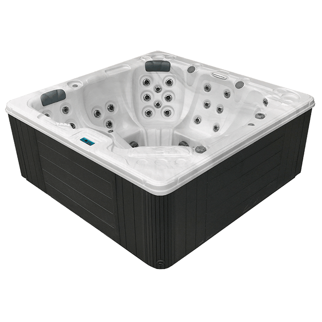 Dynasty Spas Passport Series L842 in Arden, NC